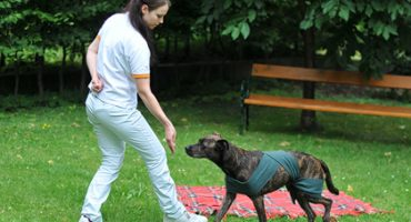 Leistungen-Physiotherapie