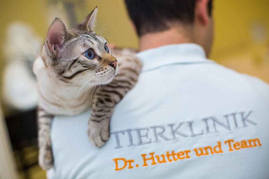 Labor-Tierklinik-Hutter